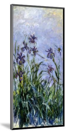Iris Mauves, 1914-1917-Claude Monet-Mounted Premium Giclee Print
