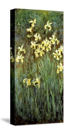 Yellow Irises-Claude Monet-Stretched Canvas Print