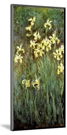 Yellow Irises-Claude Monet-Mounted Premium Giclee Print