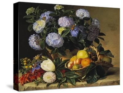 Hydrangea in an Urn and a Basket of Fruit on a Ledge-Johan Laurentz Jensen-Stretched Canvas Print