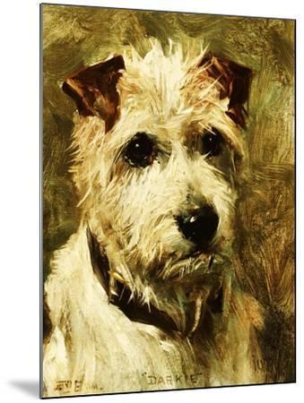 Portrait of a Terrier: Darkie, 1903-John Emms-Mounted Giclee Print