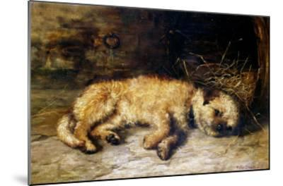 A Border Terrier Puppy-Philip Eustace Stretton-Mounted Giclee Print