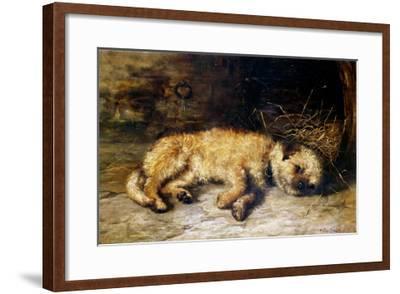 A Border Terrier Puppy-Philip Eustace Stretton-Framed Giclee Print