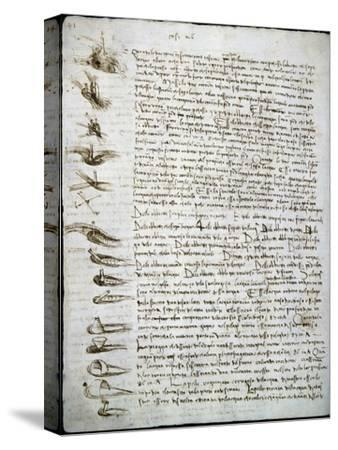 Codex Leicester: Water Flow-Leonardo da Vinci-Stretched Canvas Print