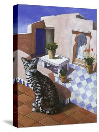 Cat of Morocco (Chat Du Maroc)-Isy Ochoa-Stretched Canvas Print