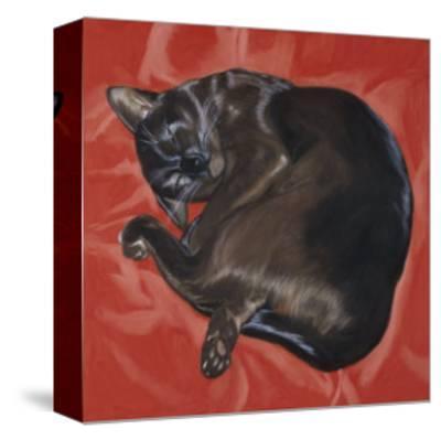 Velvet Cat I (Chat Velours I)-Isy Ochoa-Stretched Canvas Print