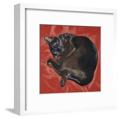 Velvet Cat I (Chat Velours I)-Isy Ochoa-Framed Giclee Print