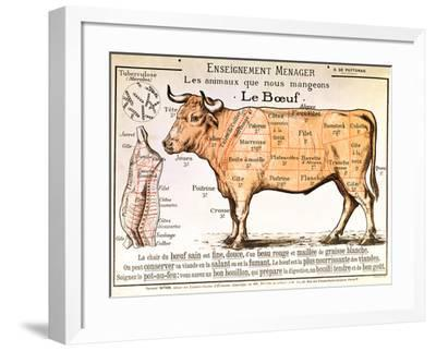 Beef: Diagram Depicting the Different Cuts of Meat--Framed Giclee Print