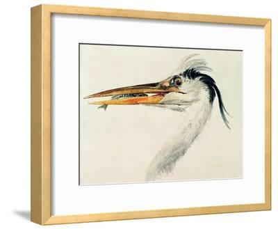 Heron with a Fish-J^ M^ W^ Turner-Framed Giclee Print
