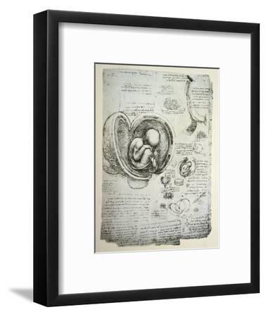 The Human Foetus in the Womb, Facsimile Copy-Leonardo da Vinci-Framed Premium Giclee Print
