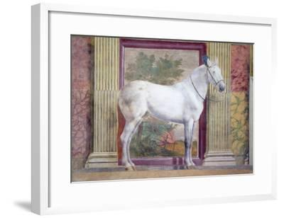 Sala Dei Cavalli, Detail Showing Portrait of a Grey Horse from the Stables of Ludovico Gonzaga III-Giulio Romano-Framed Giclee Print