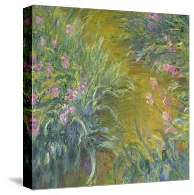 Iris-Claude Monet-Stretched Canvas Print