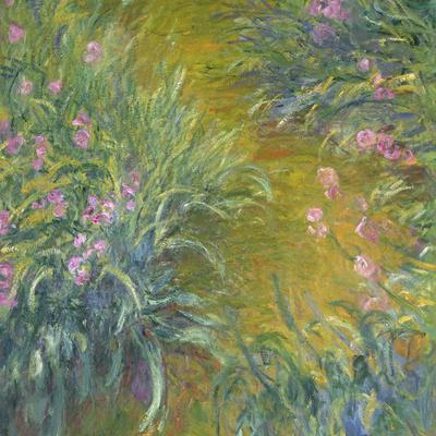 Iris-Claude Monet-Giclee Print