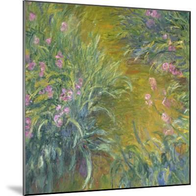 Iris-Claude Monet-Mounted Giclee Print