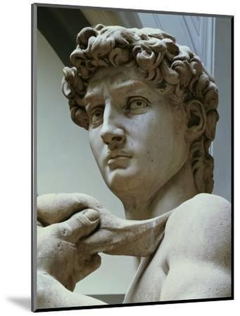 David, Detail of the Head, 1504-Michelangelo Buonarroti-Mounted Premium Giclee Print