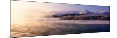 Chilkat River, Haines, Alaska, USA--Mounted Photographic Print