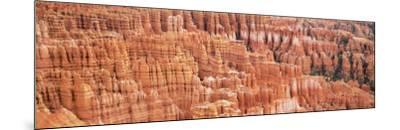 Pinnacle, Bryce Canyon National Park, Utah, USA--Mounted Photographic Print