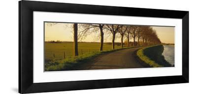 Winding Road, Trees, Oudendijk, Netherlands--Framed Photographic Print