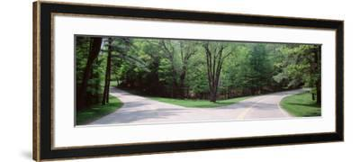 Fork in a Road Surrounded by Trees, Park Road, Letchworth State Park, New York State, USA--Framed Photographic Print