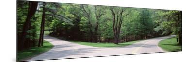 Fork in a Road Surrounded by Trees, Park Road, Letchworth State Park, New York State, USA--Mounted Photographic Print