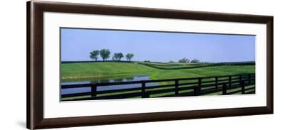Horse Farm, Kentucky, USA--Framed Photographic Print