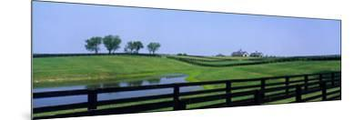 Horse Farm, Kentucky, USA--Mounted Photographic Print