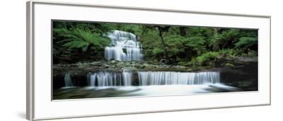 Liffey Falls, Tasmania, Australia--Framed Photographic Print