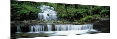Liffey Falls, Tasmania, Australia--Mounted Photographic Print