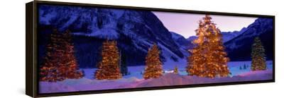 Lighted Christmas Trees, Chateau Lake Louise, Lake Louise, Alberta, Canada--Framed Stretched Canvas Print