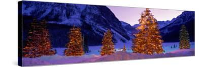 Lighted Christmas Trees, Chateau Lake Louise, Lake Louise, Alberta, Canada--Stretched Canvas Print