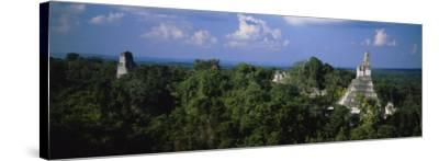 High Angle View of an Old Temple, Tikal, Guatemala--Stretched Canvas Print