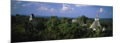 High Angle View of an Old Temple, Tikal, Guatemala--Mounted Photographic Print