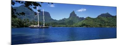 Sailboats Sailing in the Ocean, Opunohu Bay, Moorea, French Polynesia--Mounted Photographic Print
