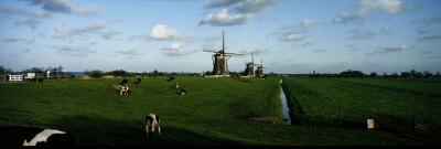 Windmills, Netherlands--Framed Photographic Print