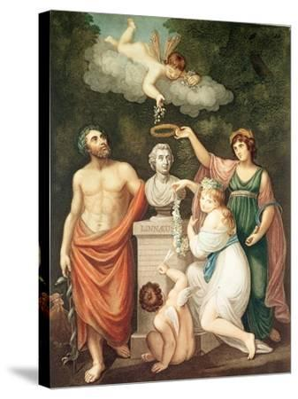 "Aesculapius, Flora, Ceres and Cupid Honouring Linnaeus, from ""The Temple of Flora"", Published 1800--Stretched Canvas Print"
