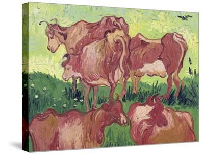 Cows, c.1890-Vincent van Gogh-Stretched Canvas Print