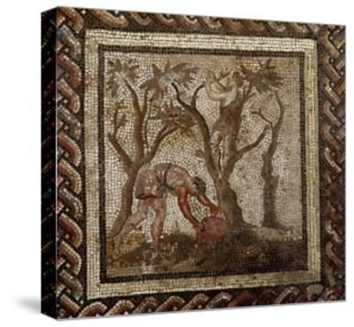 Harvesting Grapes, from Saint-Romain-En-Gal--Stretched Canvas Print