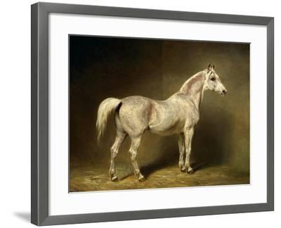 Beatrice, the White Arab Saddlehorse of Helmuth Graf Von Moltke, 1855-Carl Constantin Steffeck-Framed Giclee Print