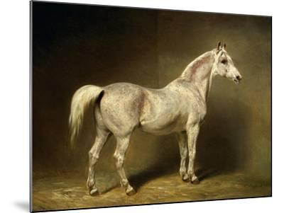 Beatrice, the White Arab Saddlehorse of Helmuth Graf Von Moltke, 1855-Carl Constantin Steffeck-Mounted Giclee Print