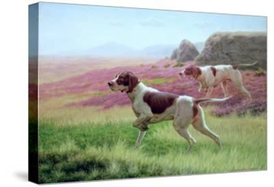 Pointers in a Landscape-Harrington Bird-Stretched Canvas Print