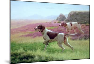 Pointers in a Landscape-Harrington Bird-Mounted Giclee Print