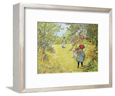 The Apple Harvest-Carl Larsson-Framed Premium Giclee Print
