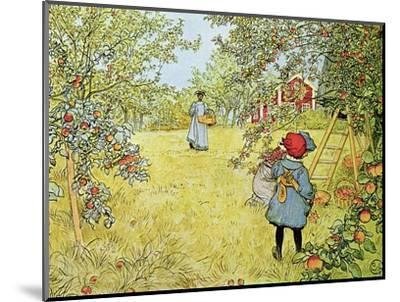 The Apple Harvest-Carl Larsson-Mounted Premium Giclee Print