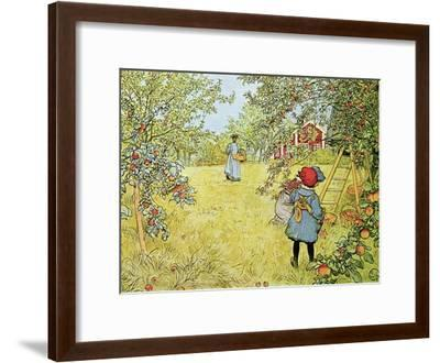 The Apple Harvest-Carl Larsson-Framed Giclee Print