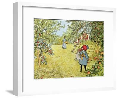 The Apple Harvest-Carl Larsson-Framed Giclee Print