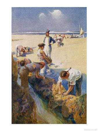 Captain Bligh and His Fellow Castaways Survive by Seeking Oysters off the Great Barrier Reef-Alec Ball-Framed Giclee Print