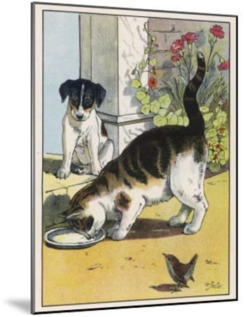 Cat Drinks a Saucer of Milk at a Doorstep Whilst Watched by a Dog-W^ Foster-Mounted Giclee Print