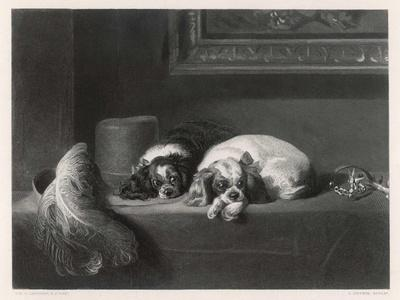 King Charles Spaniels the Cavalier Pets-J. Outrim-Stretched Canvas Print