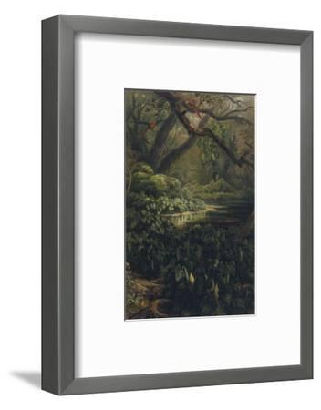 Xanthosoma and Other Exotic Flora and Birds in the Brazilian Jungle-J^ Selleny-Framed Premium Giclee Print
