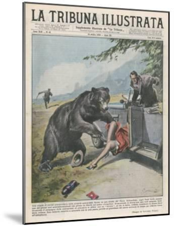 In Yellowstone a Bear Pats a Woman in a Car-Vittorio Pisani-Mounted Giclee Print